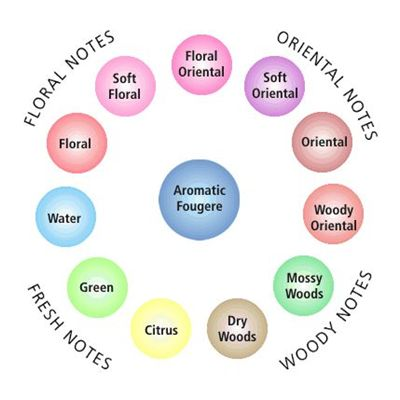 Picture Of Fragrance Wheel Perfume Classification Chart